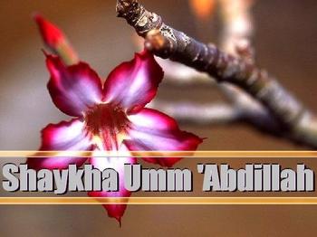 Fleur_du_desert_du_kenya